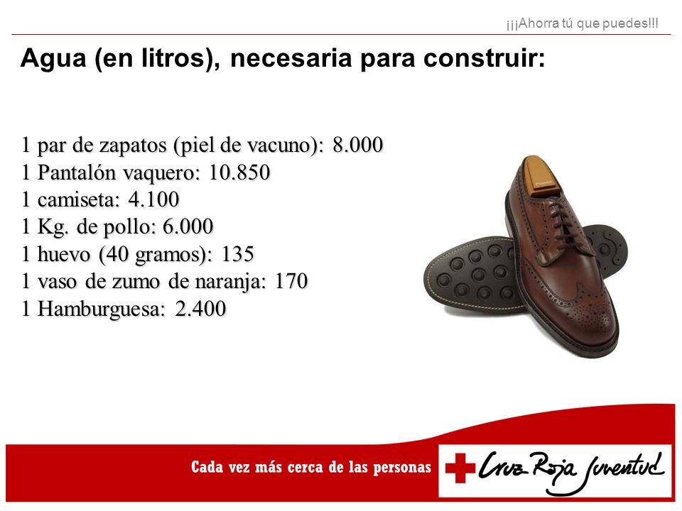 Agua (en litros), necesaria para construir: 1 par de zapatos (piel de vacuno): 8.000 1 Pantalón vaquero: 10.850 1 camiseta: 4.100 1 Kg. de pollo: 6.00