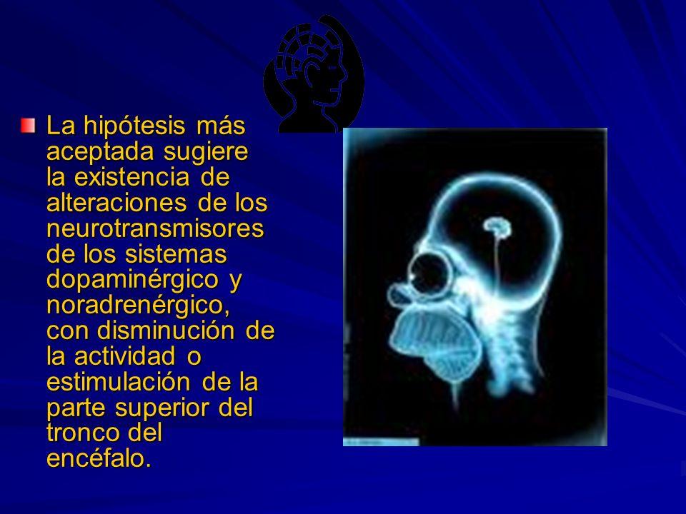 La hipótesis más aceptada sugiere la existencia de alteraciones de los neurotransmisores de los sistemas dopaminérgico y noradrenérgico, con disminución de la actividad o estimulación de la parte superior del tronco del encéfalo.