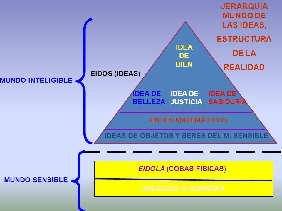 IDEA DE BIEN IDEA DE BELLEZA IDEA DE JUSTICIA ENTES MATEMÁTICOS EIDOLA (COSAS FISICAS) IDEAS DE OBJETOS Y SERES DEL M. SENSIBLE IMÁGENES O SOMBRAS MUN