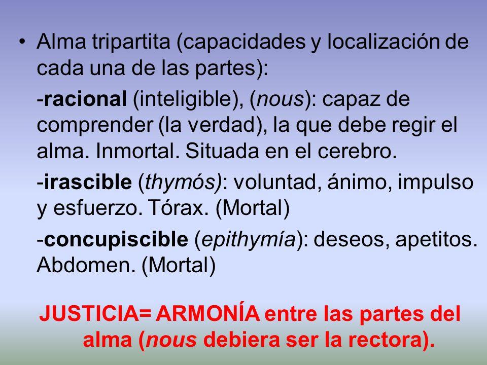 Alma tripartita (capacidades y localización de cada una de las partes): -racional (inteligible), (nous): capaz de comprender (la verdad), la que debe