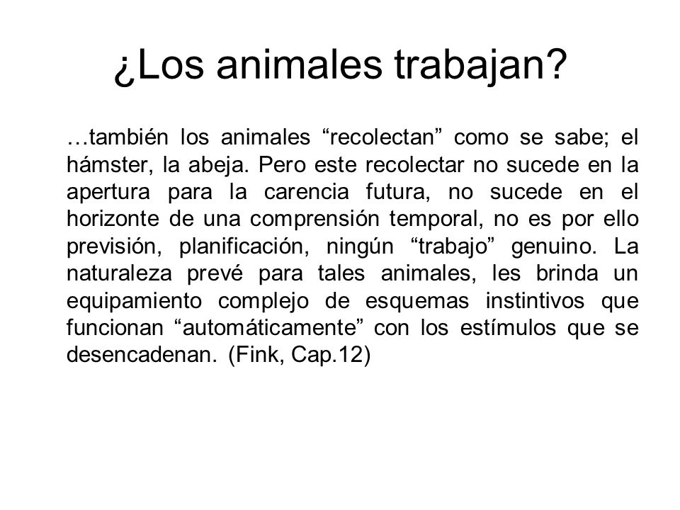 …también los animales recolectan como se sabe; el hámster, la abeja.