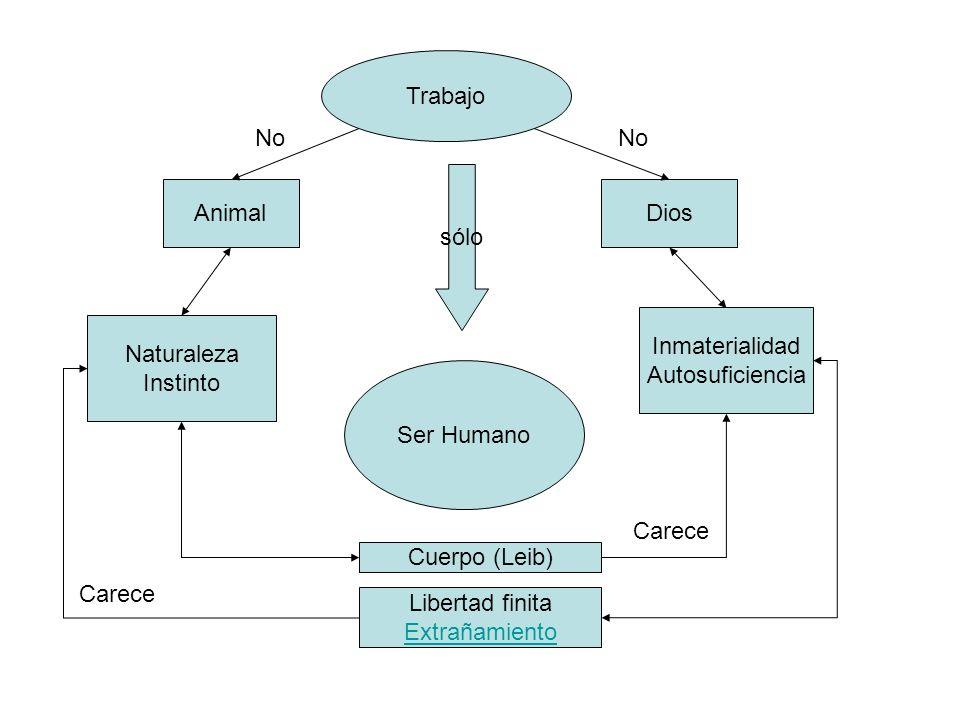 Animal Naturaleza Instinto Inmaterialidad Autosuficiencia Dios Ser Humano Cuerpo (Leib) Libertad finita Extrañamiento Trabajo No sólo Carece