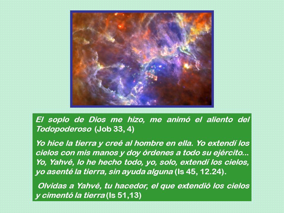 El soplo de Dios me hizo, me animó el aliento del Todopoderoso (Job 33, 4) Yo hice la tierra y creé al hombre en ella. Yo extendí los cielos con mis m