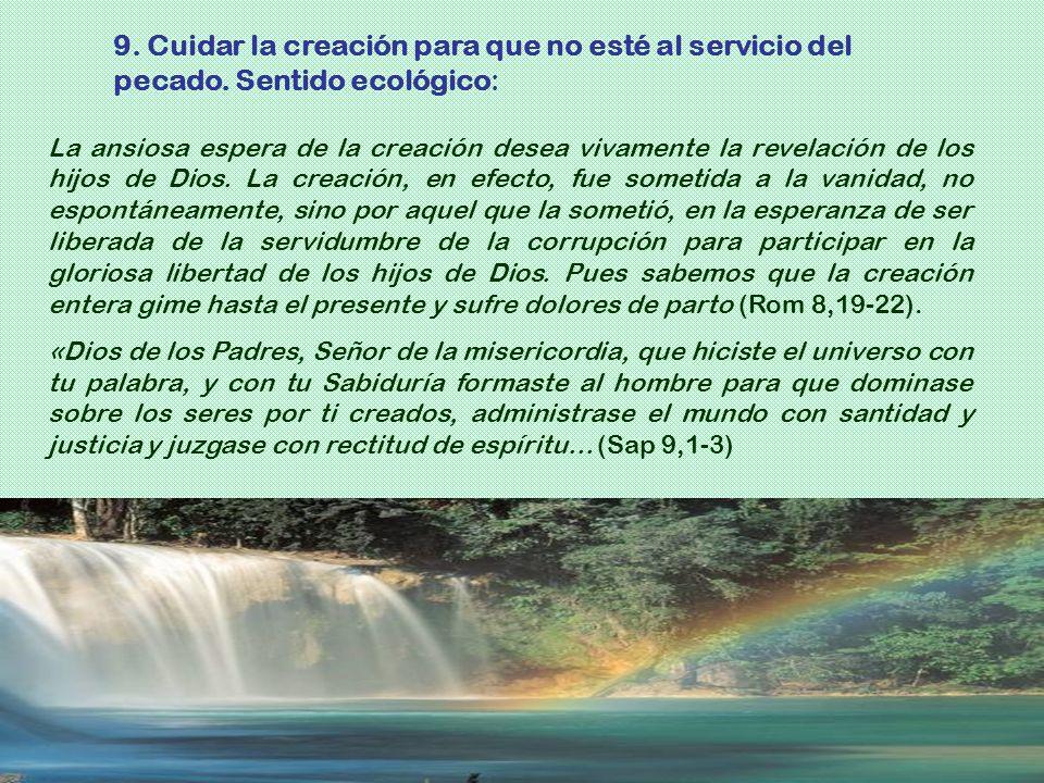 La ansiosa espera de la creación desea vivamente la revelación de los hijos de Dios. La creación, en efecto, fue sometida a la vanidad, no espontáneam