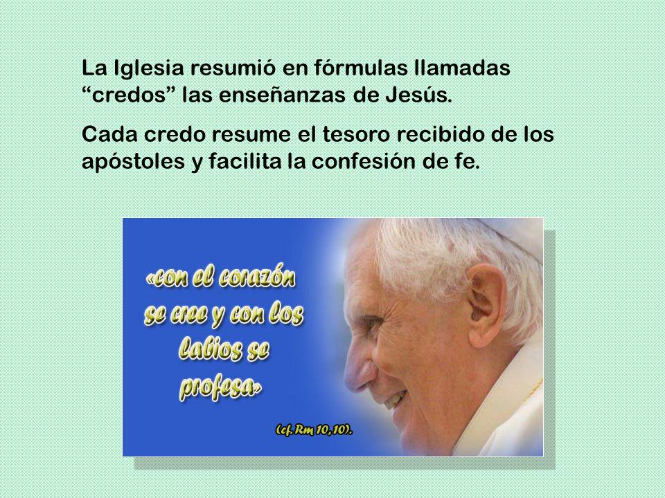 A estas síntesis de la fe se las llama profesiones de fe porque resumen la fe que profesan los cristianos.