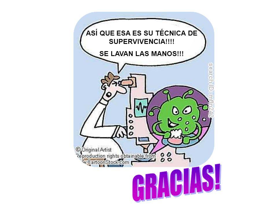 AASÍ ASÍ QUE ESA ES SU TÉCNICA DE SUPERVIVENCIA!!!! SE LAVAN LAS MANOS!!!