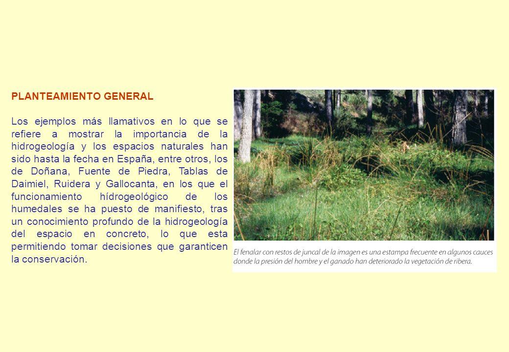 PLANTEAMIENTO GENERAL Los ejemplos más llamativos en lo que se refiere a mostrar la importancia de la hidrogeología y los espacios naturales han sido
