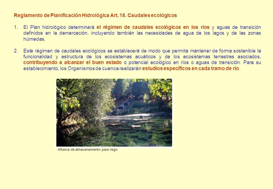 Reglamento de Planificación Hidrológica Art. 18. Caudales ecológicos 1.El Plan hidrológico determinará el régimen de caudales ecológicos en los ríos y