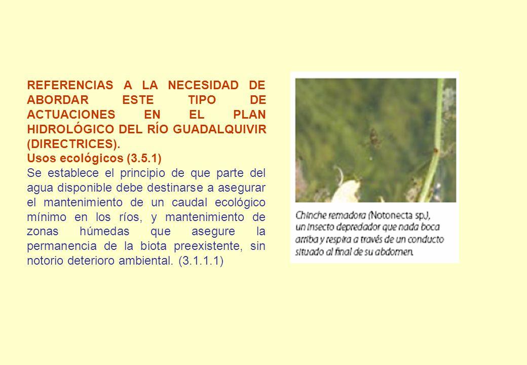 REFERENCIAS A LA NECESIDAD DE ABORDAR ESTE TIPO DE ACTUACIONES EN EL PLAN HIDROLÓGICO DEL RÍO GUADALQUIVIR (DIRECTRICES). Usos ecológicos (3.5.1) Se e