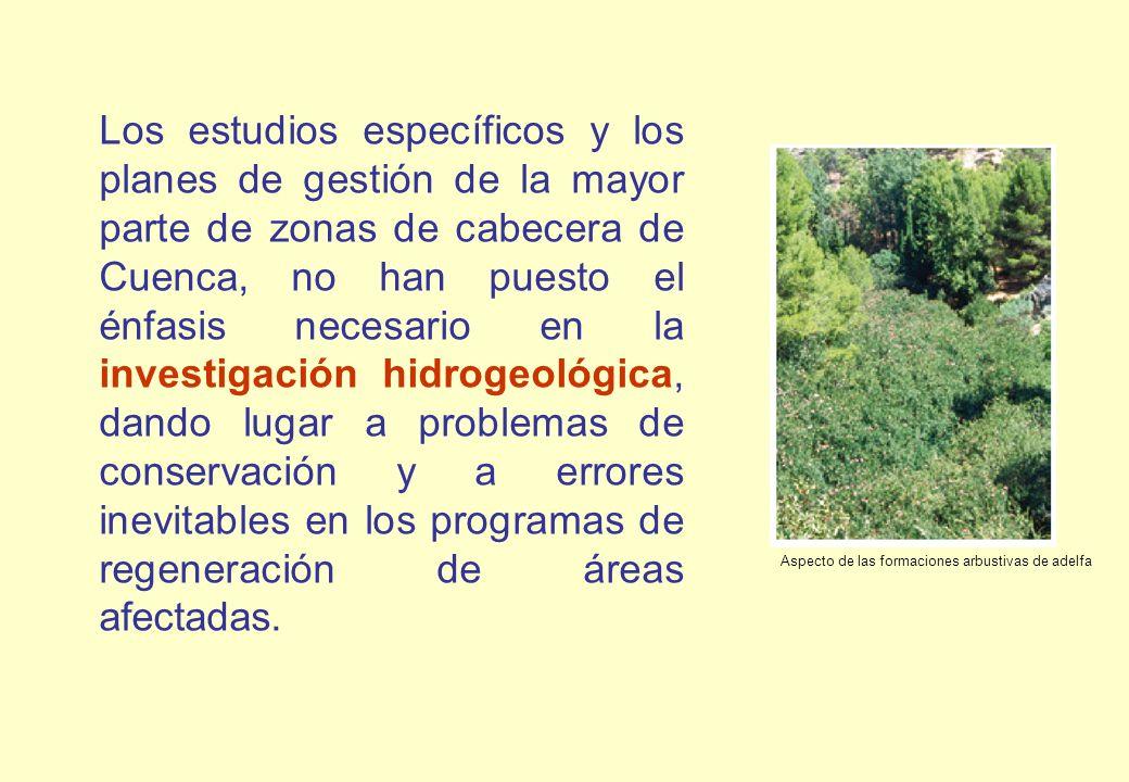 Los estudios específicos y los planes de gestión de la mayor parte de zonas de cabecera de Cuenca, no han puesto el énfasis necesario en la investigac