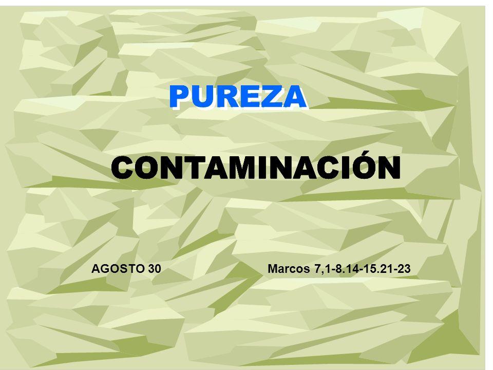 PUREZA PUREZA CONTAMINACIÓN PUREZA CONTAMINACIÓN PUREZA CONTAMINACIÓN PUREZA CONTAMINACIÓN PUREZA CONTAMINACIÓN AGOSTO 30Marcos 7,1-8.14-15.21-23