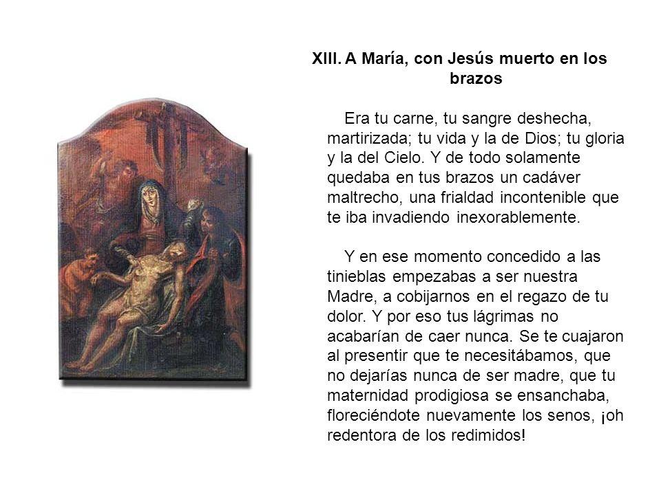 XII. Jesús muere en la Cruz Muerte victoriosa la tuya.
