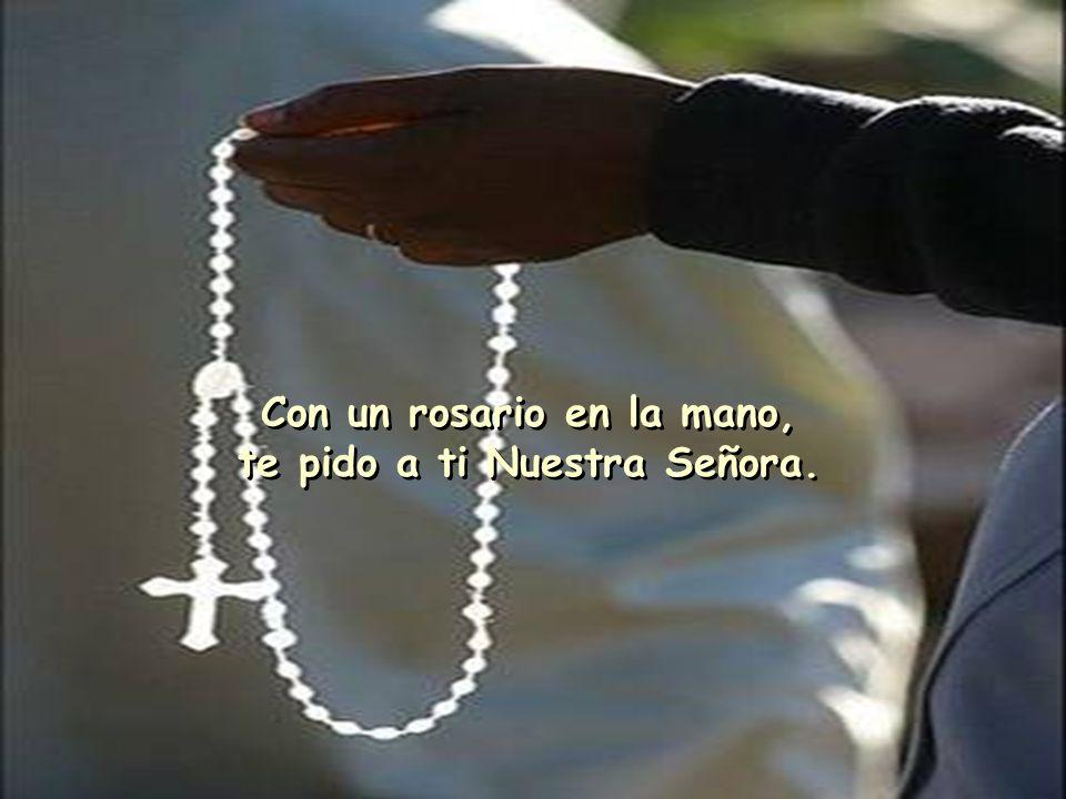 Lleva mi oración a Jesús, Santa Madre que nos guía. Lleva mi oración a Jesús, Santa Madre que nos guía.
