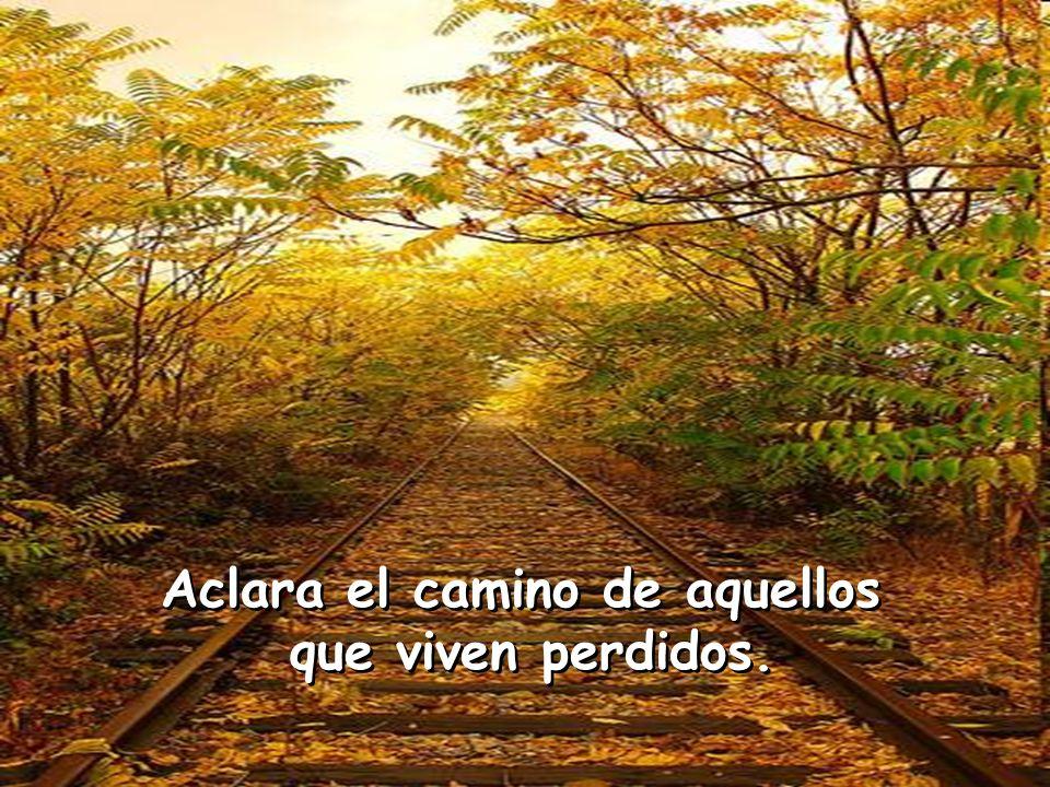 Aclara el camino de aquellos que viven perdidos. Aclara el camino de aquellos que viven perdidos.