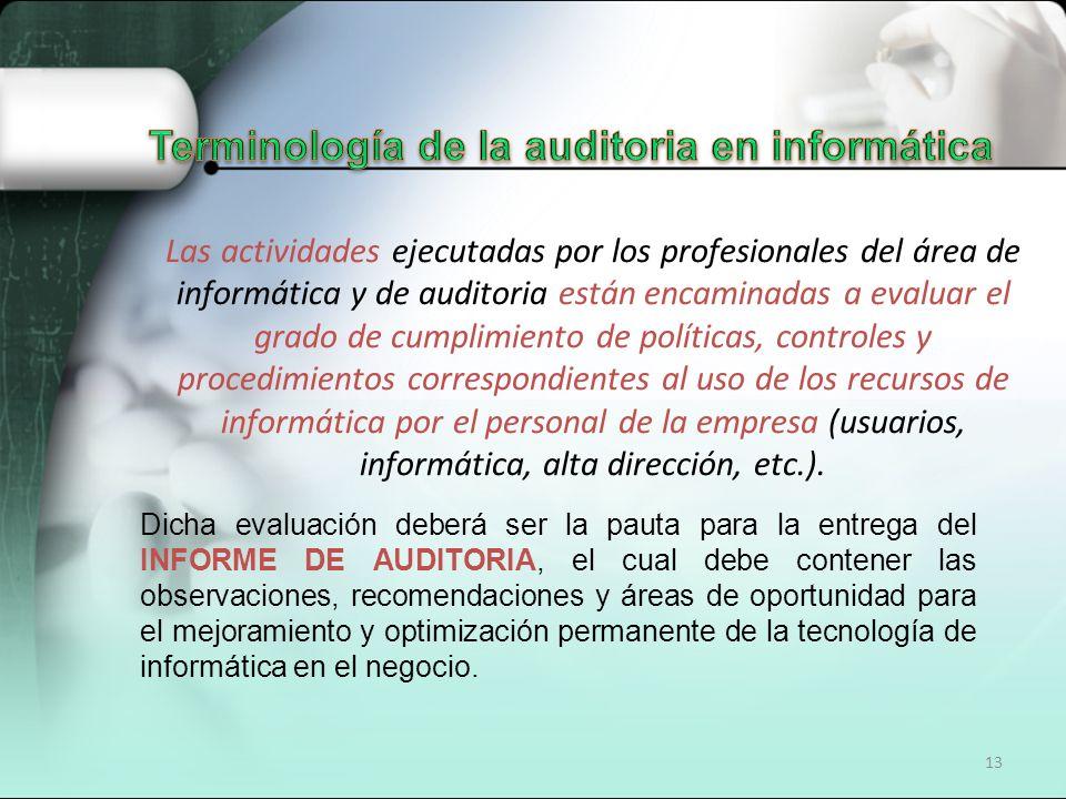 13 Dicha evaluación deberá ser la pauta para la entrega del INFORME DE AUDITORIA, el cual debe contener las observaciones, recomendaciones y áreas de