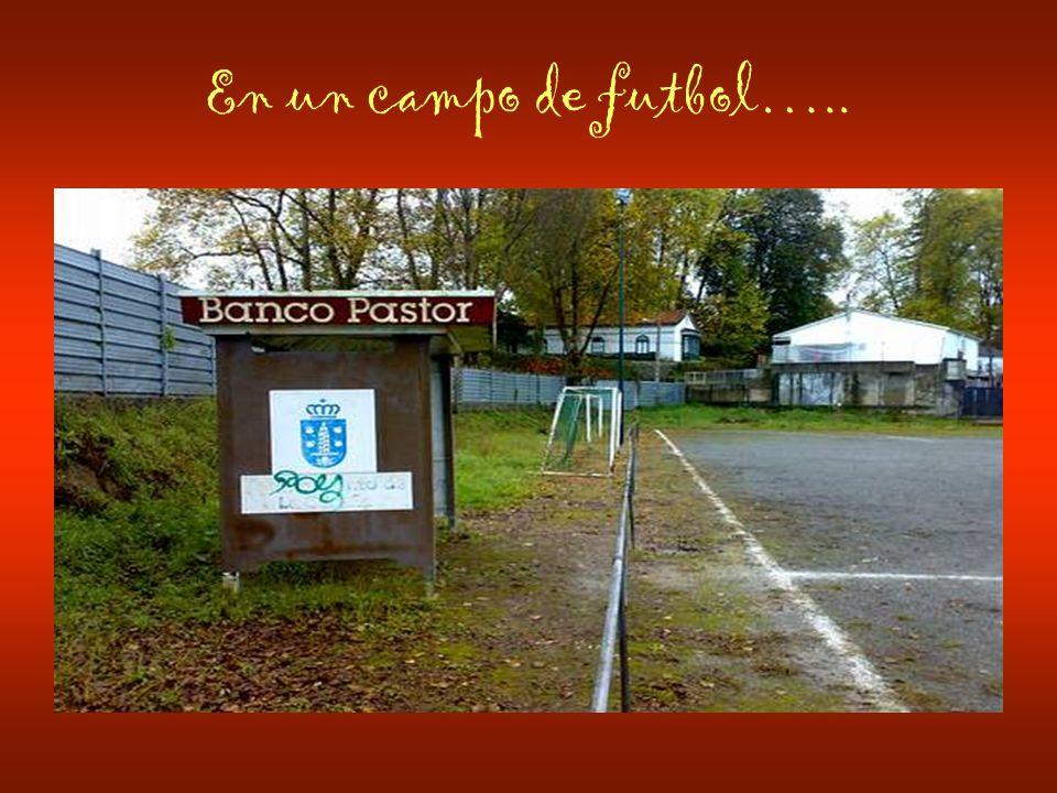 En un campo de futbol…..