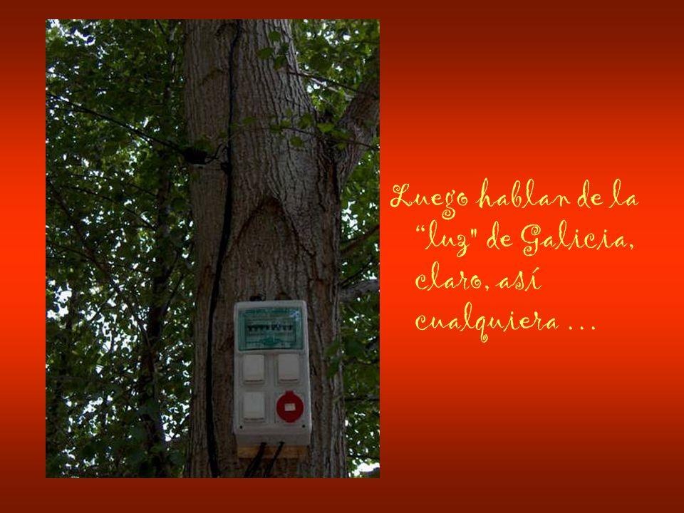 Luego hablan de la luz de Galicia, claro, así cualquiera …