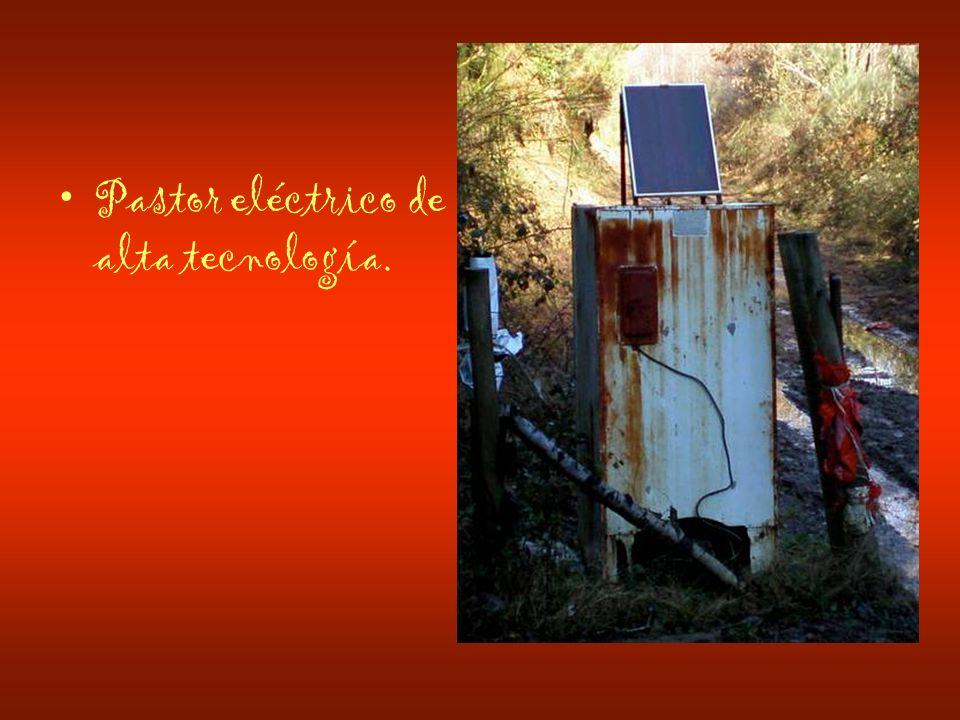 Pastor eléctrico de alta tecnología.