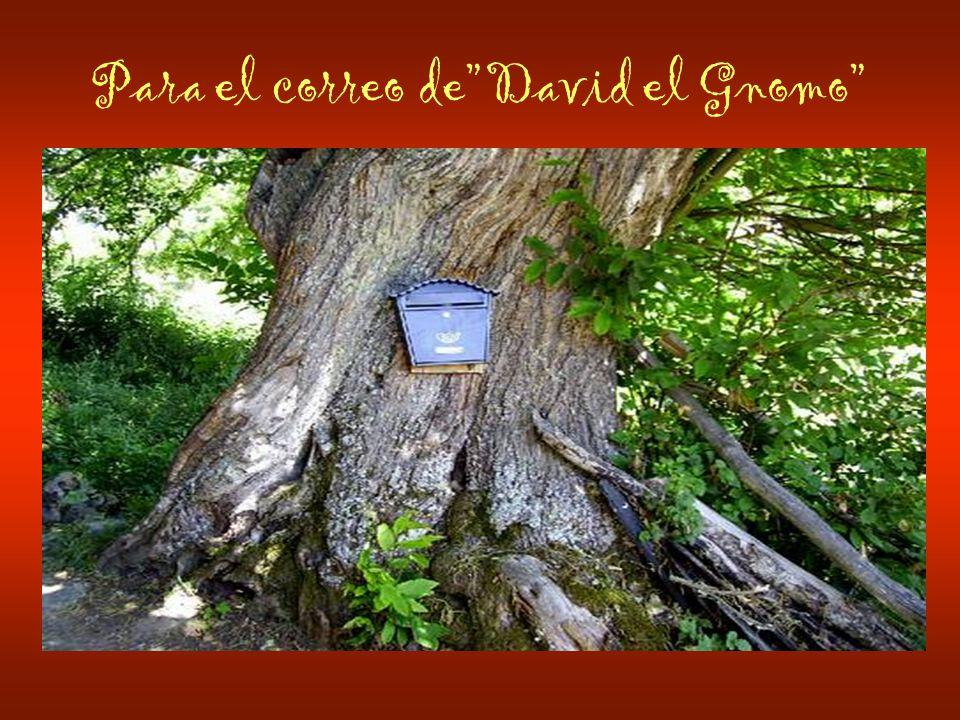Para el correo deDavid el Gnomo
