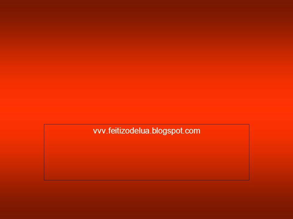 vvv.feitizodelua.blogspot.com