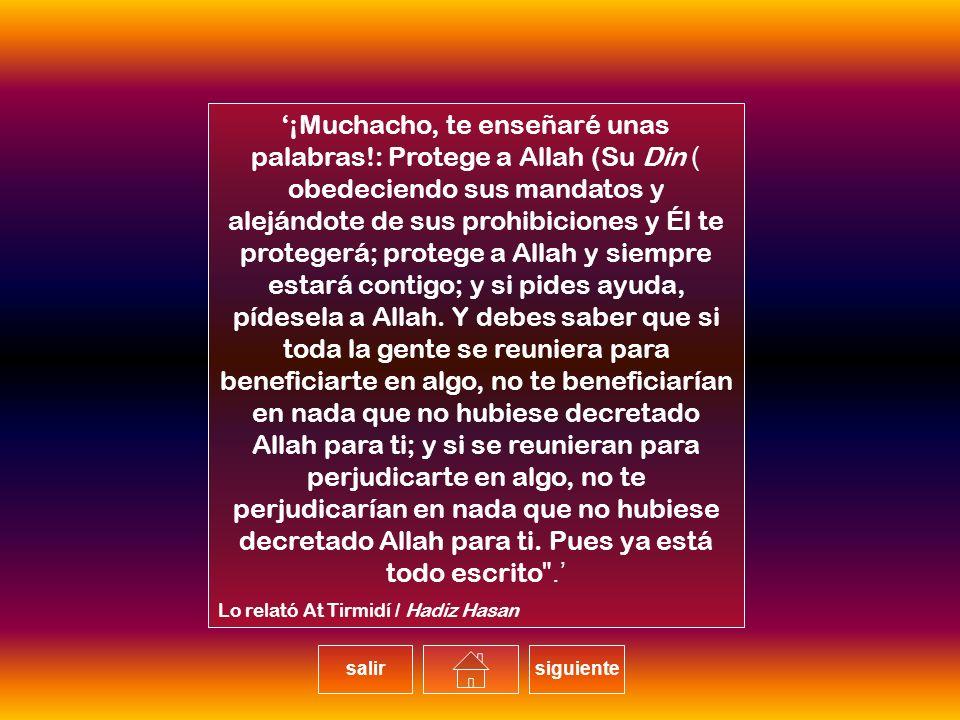 ¡Muchacho, te enseñaré unas palabras!: Protege a Allah (Su Din) obedeciendo sus mandatos y alejándote de sus prohibiciones y Él te protegerá; protege a Allah y siempre estará contigo; y si pides ayuda, pídesela a Allah.