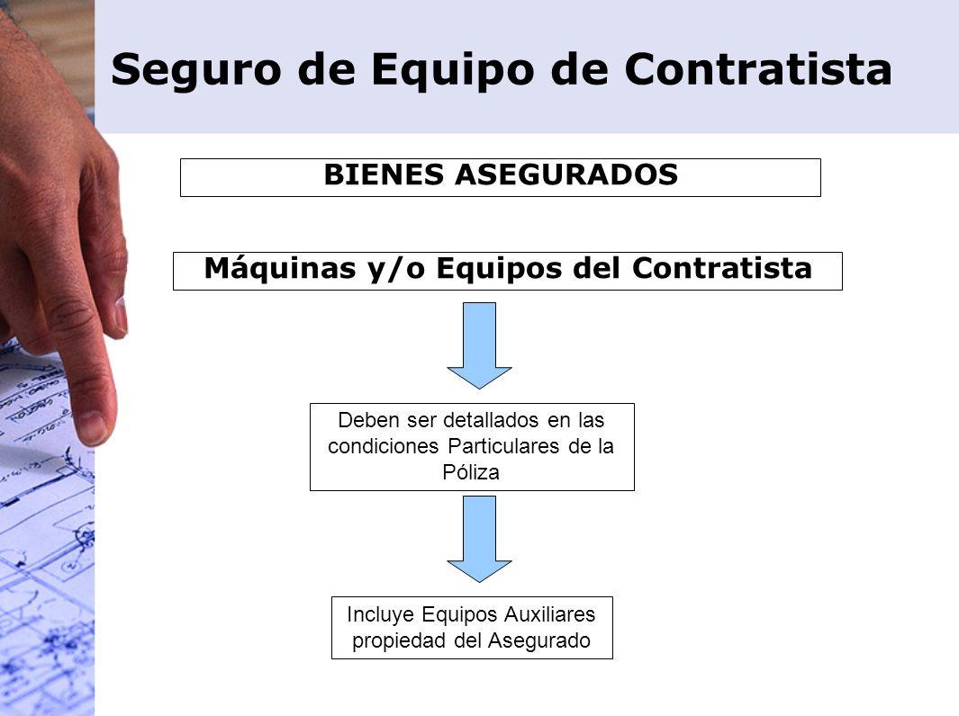 Deben ser detallados en las condiciones Particulares de la Póliza Incluye Equipos Auxiliares propiedad del Asegurado Máquinas y/o Equipos del Contrati