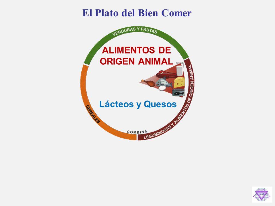 El Plato del Bien Comer ALIMENTOS DE ORIGEN ANIMAL Lácteos y Quesos