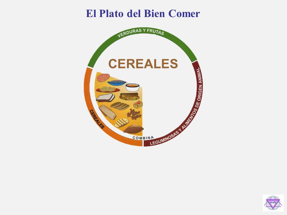 El Plato del Bien Comer CEREALES
