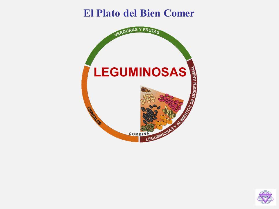 El Plato del Bien Comer ALIMENTOS DE ORIGEN ANIMAL Pescados