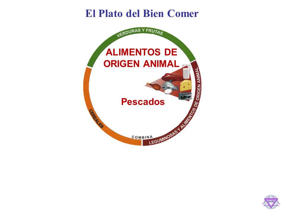 El Plato del Bien Comer ALIMENTOS DE ORIGEN ANIMAL Pescados Pescados y Mariscos Frescos y enlatados