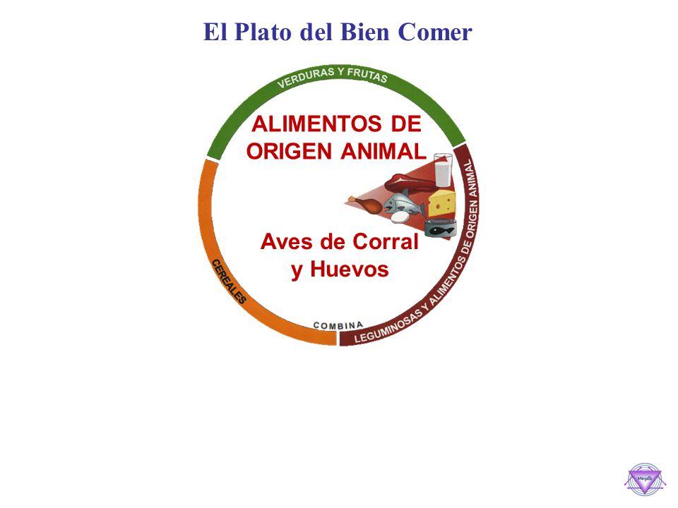 El Plato del Bien Comer ALIMENTOS DE ORIGEN ANIMAL Carnes Rojas