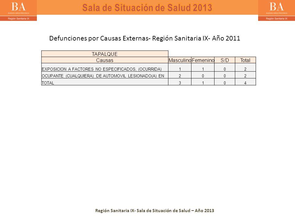 Región Sanitaria IX- Sala de Situación de Salud – Año 2013 TAPALQUE CausasMasculinoFemeninoS/DTotal EXPOSICION A FACTORES NO ESPECIFICADOS, (OCURRIDA)1102 OCUPANTE (CUALQUIERA) DE AUTOMOVIL LESIONADO(A) EN2002 TOTAL3104 Defunciones por Causas Externas- Región Sanitaria IX- Año 2011
