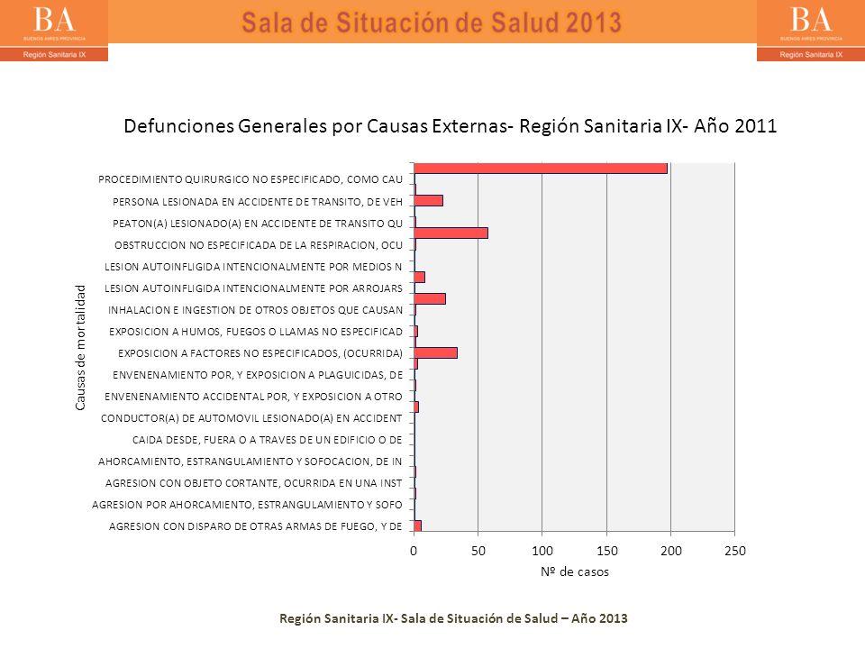 Región Sanitaria IX- Sala de Situación de Salud – Año 2013 Defunciones Generales por Causas Externas- Región Sanitaria IX- Año 2011