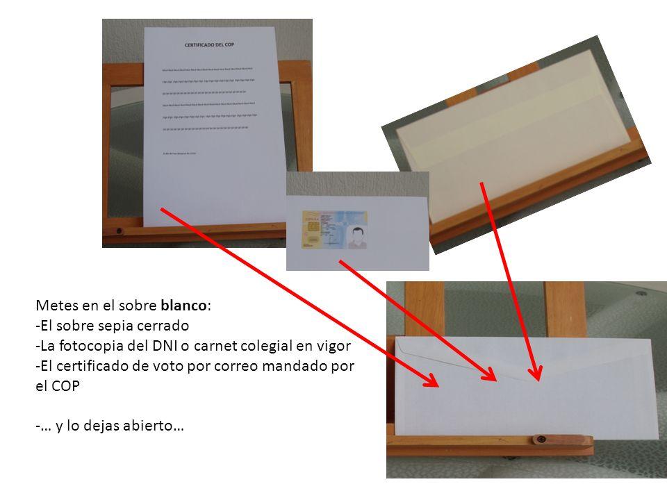 Metes en el sobre blanco: -El sobre sepia cerrado -La fotocopia del DNI o carnet colegial en vigor -El certificado de voto por correo mandado por el C