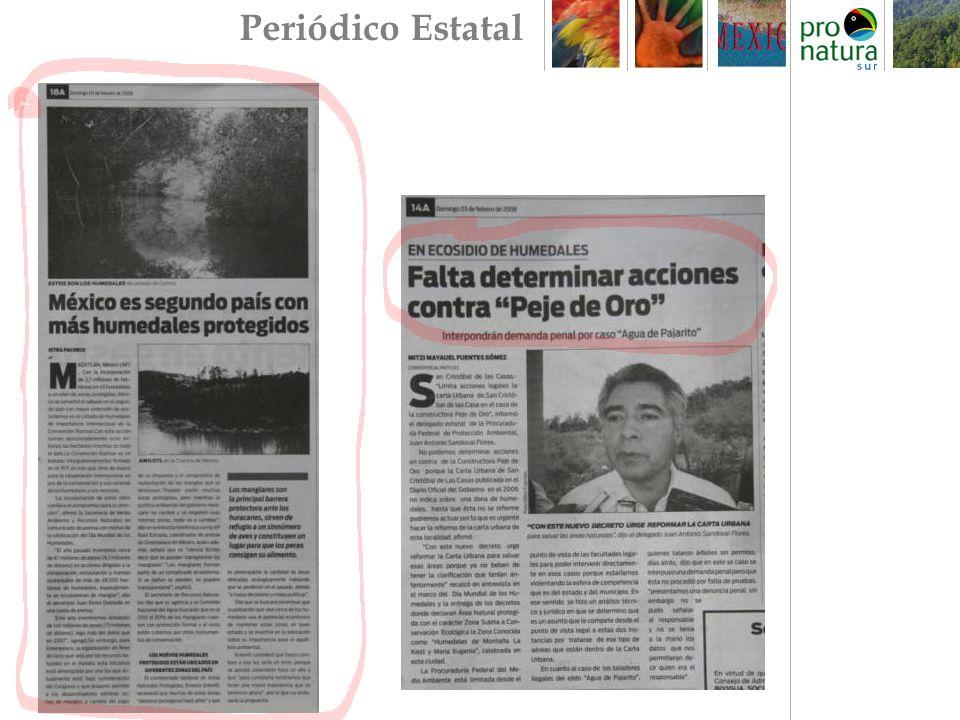Periódico Estatal