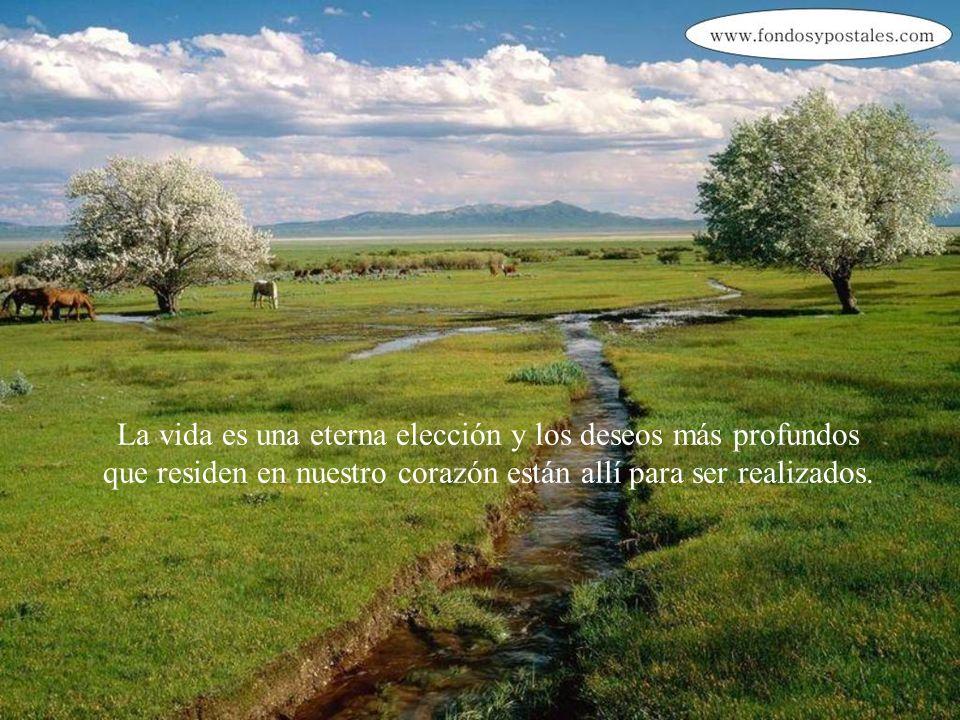 La vida es una eterna elección y los deseos más profundos que residen en nuestro corazón están allí para ser realizados.