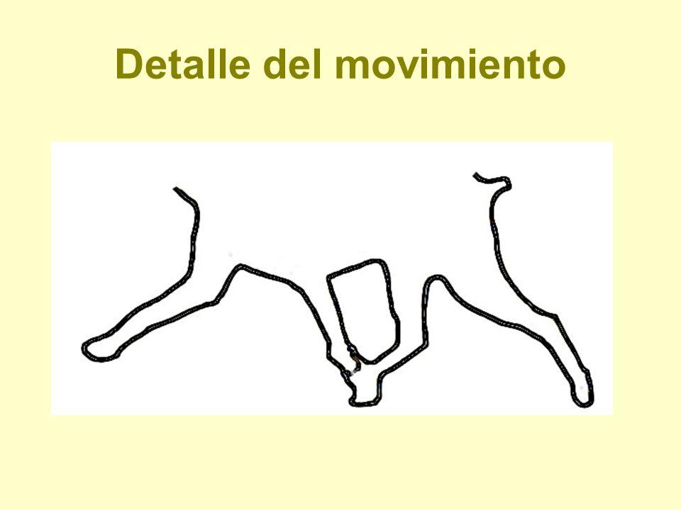 Detalle del movimiento