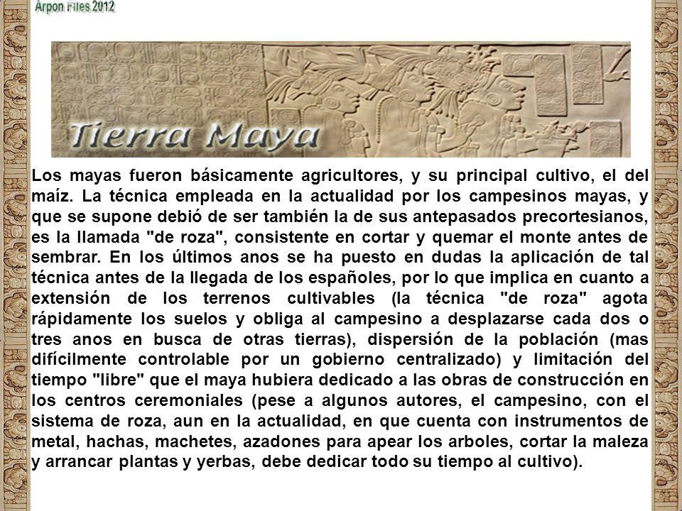 Los Mayas Fueron una de las más brillantes y poderosas culturas conocidas de Mesoamérica; su civilización se extendió por un período de tres mil años.