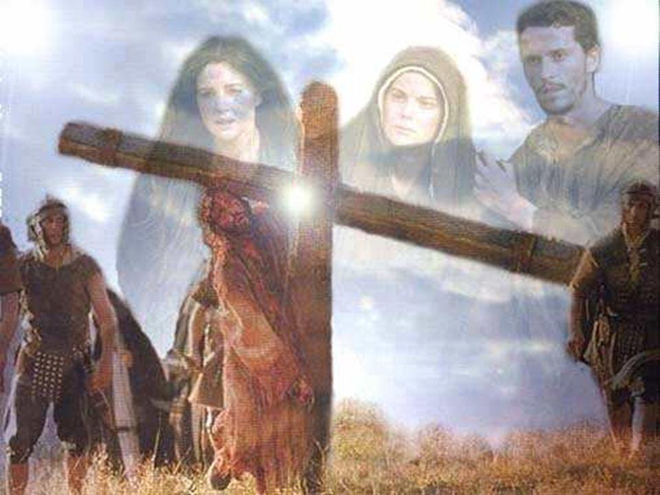Contemplándote a ti comprendemos que la cruz no significa conformismo, pasividad o cobardía; cargar con la cruz cristiana es asumir el sufrimiento que exige la construcción del Reino.