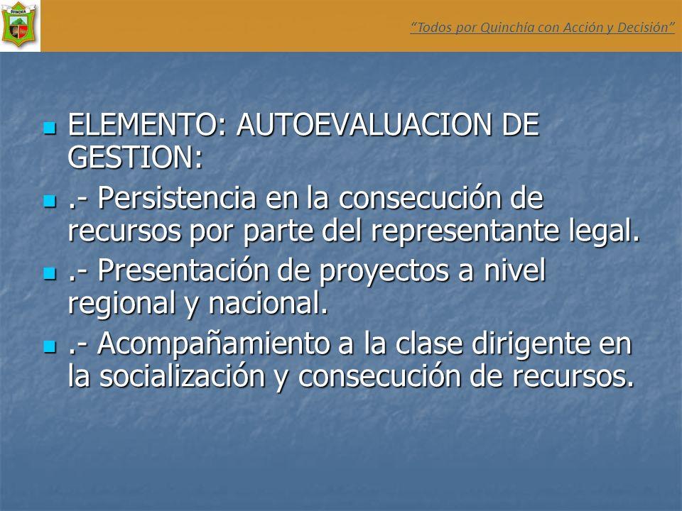 ELEMENTO: AUTOEVALUACION DE GESTION: ELEMENTO: AUTOEVALUACION DE GESTION:.- Persistencia en la consecución de recursos por parte del representante leg