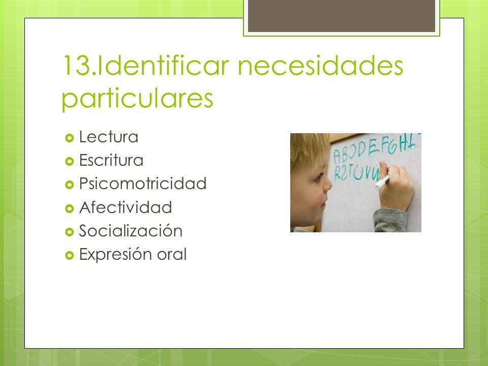 13.Identificar necesidades particulares Lectura Escritura Psicomotricidad Afectividad Socialización Expresión oral