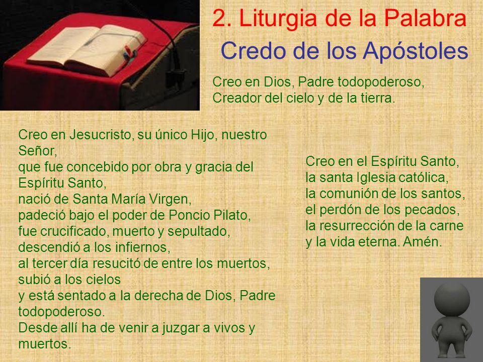 2. Liturgia de la Palabra Creo en Dios, Padre todopoderoso, Creador del cielo y de la tierra. Credo de los Apóstoles Creo en el Espíritu Santo, la san