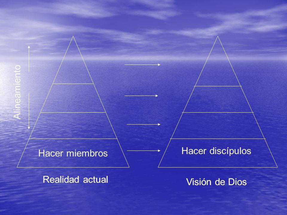 Realidad actual Vision de Dios Realidad actual Visión de Dios Hacer miembros Hacer discípulos Alineamiento
