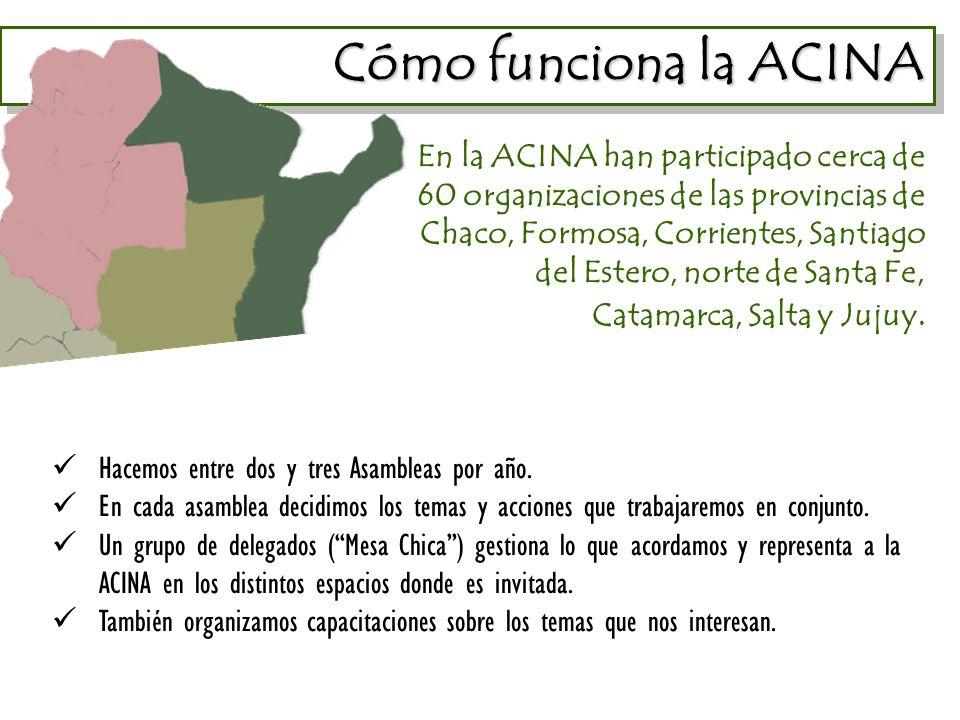Cómo funciona la ACINA Cómo funciona la ACINA En la ACINA han participado cerca de 60 organizaciones de las provincias de Chaco, Formosa, Corrientes, Santiago del Estero, norte de Santa Fe, Catamarca, Salta y Jujuy.