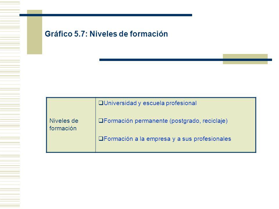Gráfico 5.7: Niveles de formación Niveles de formación Universidad y escuela profesional Formación permanente (postgrado, reciclaje) Formación a la empresa y a sus profesionales