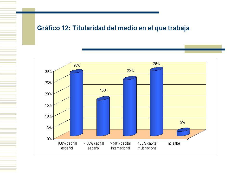 Gráfico 12: Titularidad del medio en el que trabaja