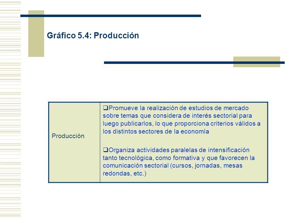 Gráfico 5.4: Producción Producción Promueve la realización de estudios de mercado sobre temas que considera de interés sectorial para luego publicarlo