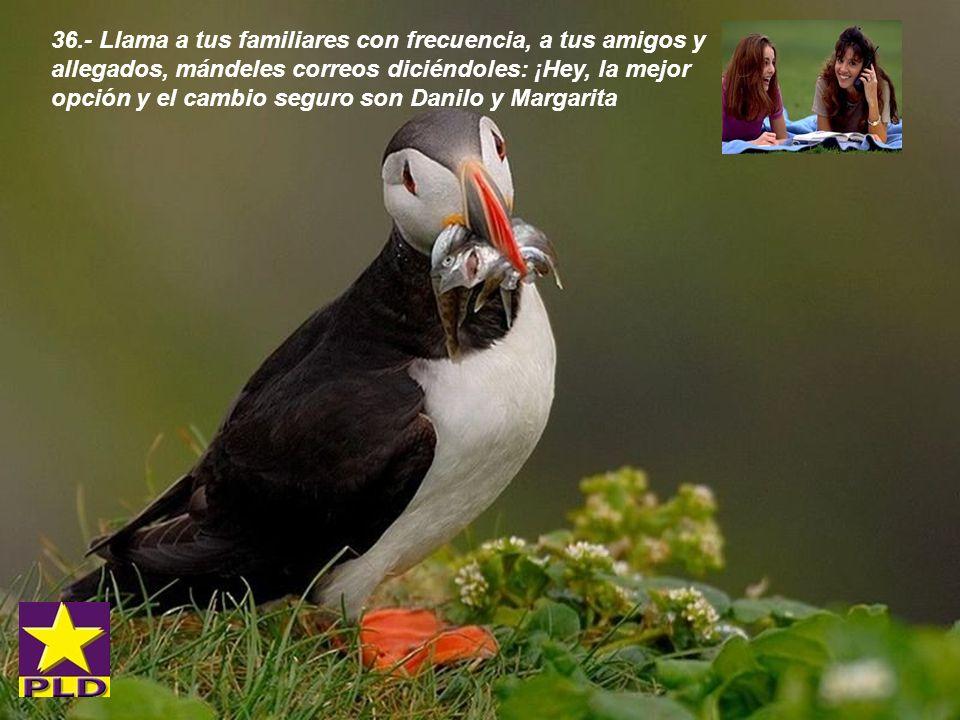35.- Con Danilo y Margarita en el poder tu vida será cada día mas hermosa es una promesa ante el pueblo y ante Dios