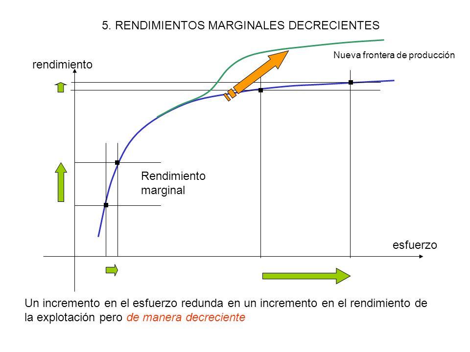 4. LOS FACTORES DE PRODUCCIÓN DE BIENES Y SERVICIOS Papel de la tecnología TRABAJOINSUMOS/TIERRACAPITAL FUNCIÓN DE PRODUCCIÓN BIENESAHORRO CONSUMO / C