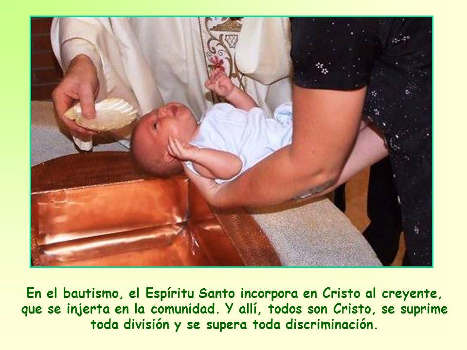 El hecho es que ese cuerpo único que componen los miembros de la comunidad, es verdaderamente el Cuerpo de Cristo. Cristo sigue viviendo en su Iglesia